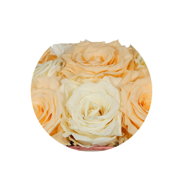 Bella Chic Vintage and Yellow Clair Luxury Preserved Roses