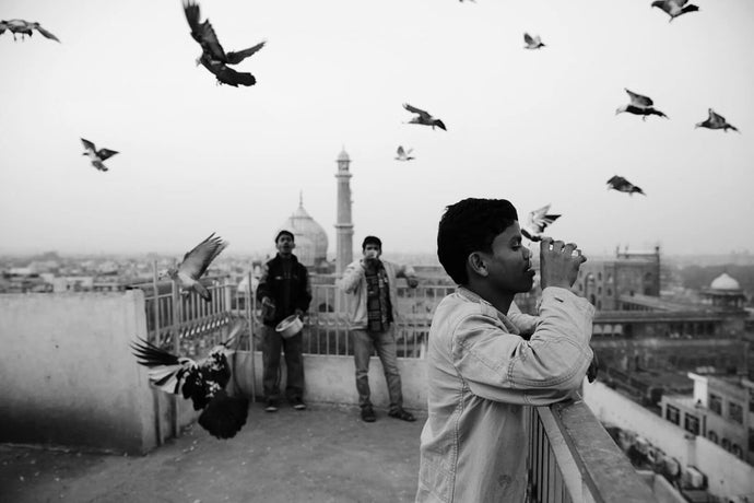 Chai break near the Masjid-i-jahan-numa, Pigeon wranglers in Chandni Chowk - Old Delhi