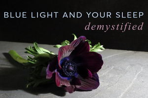 Blue Light Sleep Demystified Wink & Rise Sleep Journal (anemone against dark ground)