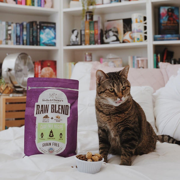 5lb Stella & Chewy's Raw Blend Cage Free Recipe for Cats