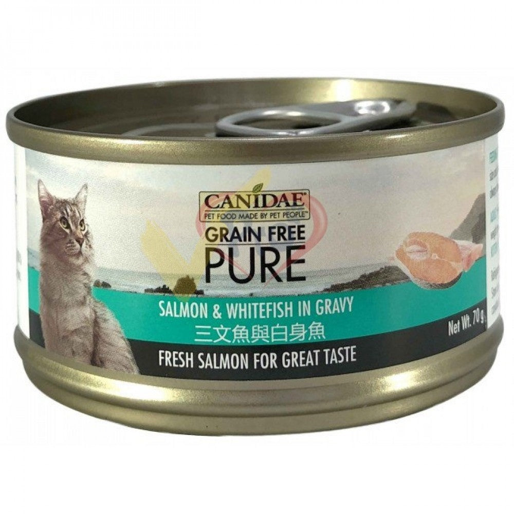 Canidae PURE Cat Can Salmon & Whitefish in Gravy 70g x24