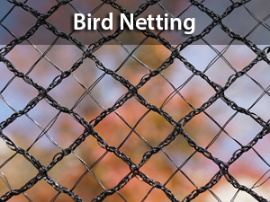Haverford | Netting and Nets - Sports Nets Bird Netting