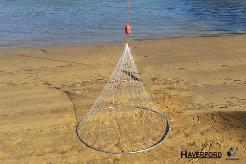Witches Hat Crab Trap - Haverford