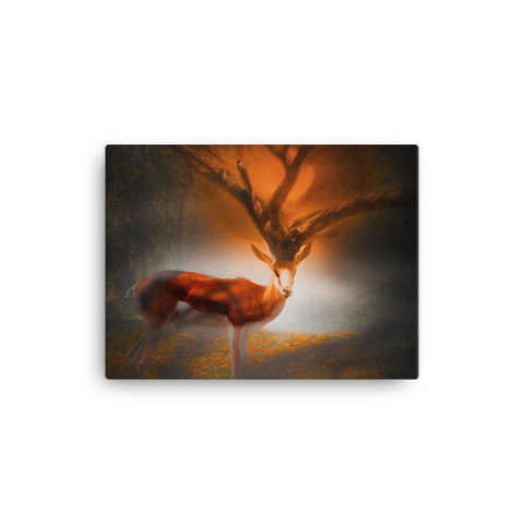 ORANGE ANTELOPE CANVAS