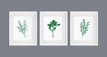 Load image into Gallery viewer, Herb Print Set INSTANT DOWNLOAD