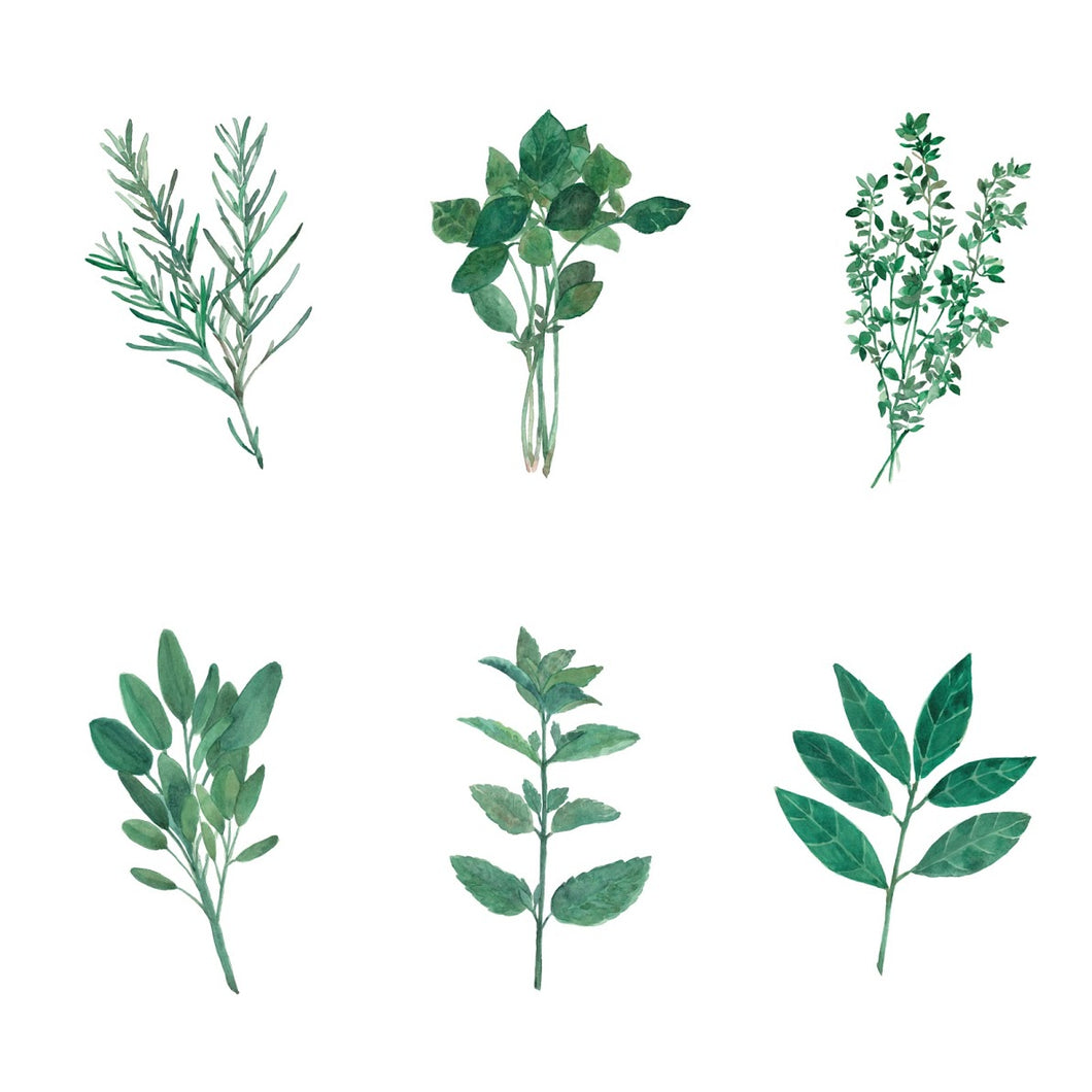 Herb Print Set INSTANT DOWNLOAD