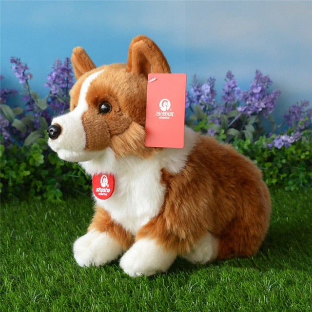 Welsh Corgi Plush Toy