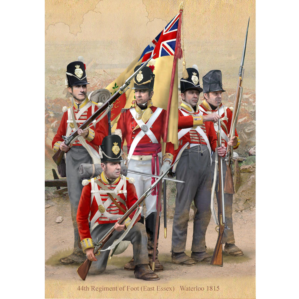 44th REGIMENT OF FOOT, Waterloo 1815