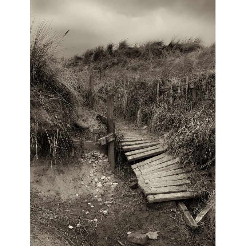 THE PATHWAY print no 8 Druridge Bay