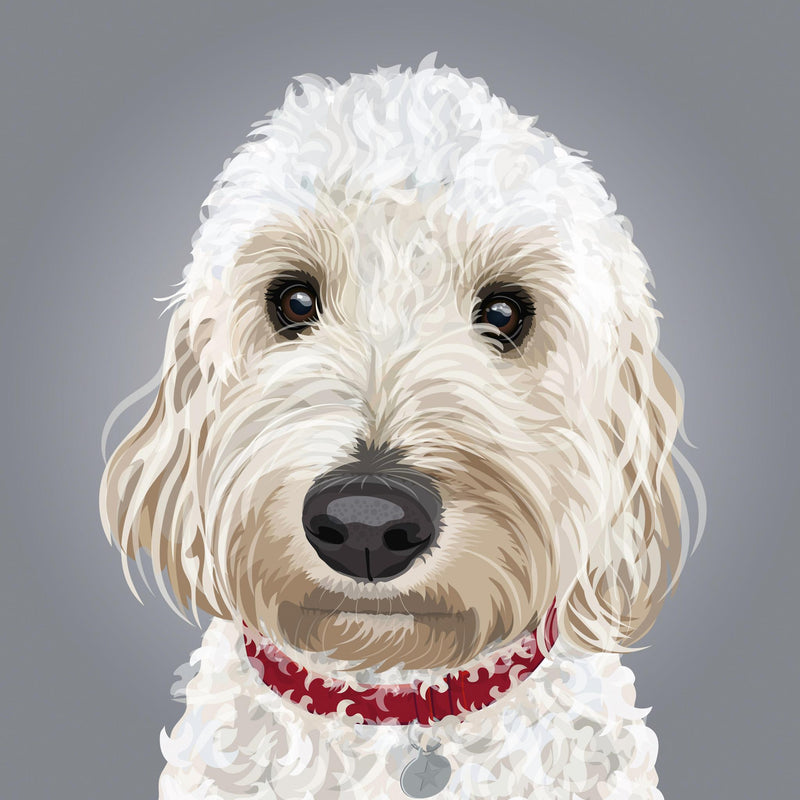 Cockapoo Illustration