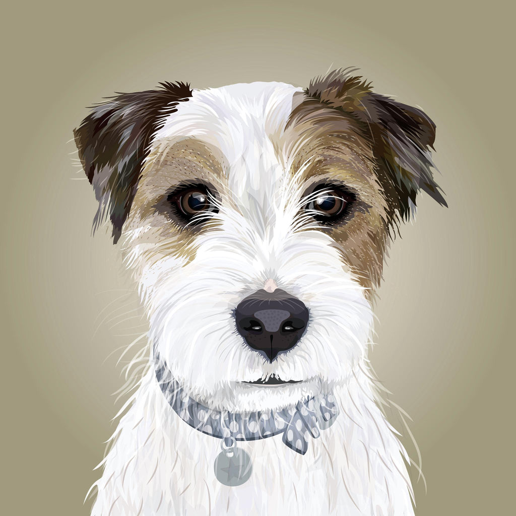 Parson Jack Russell Terrier Illustration