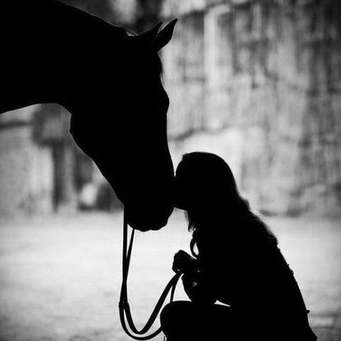Horses and woman
