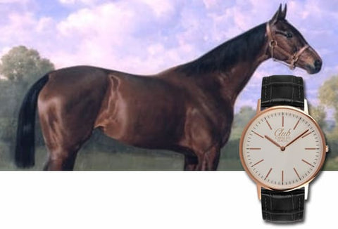 Watch and clock dedicated to the horse