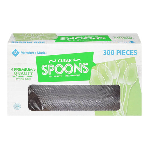 Clear Plastic Spoons, Heavyweight (300 ct.) - EZneeds