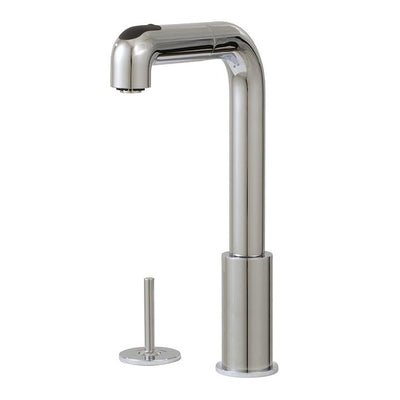 Aquabrass ABFK5043JBN 5043J Eatalia Joy 2Pcs Pull-Out Spray Kitchen Faucet Brushed Nickel
