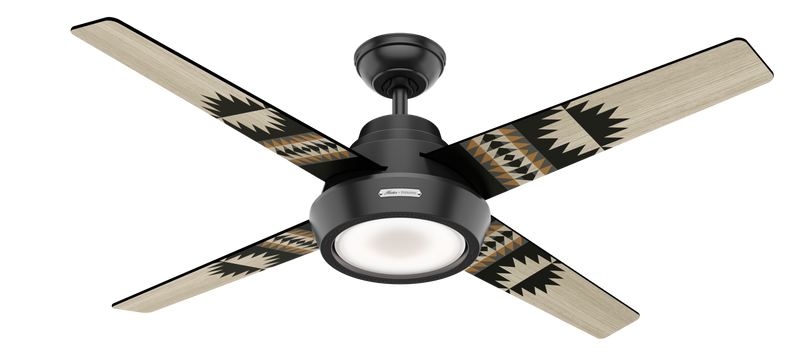 Hunter Indoor Pendleton Ceiling Fan with LED LightJD inch, Black, 59389