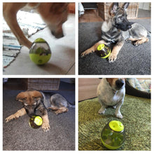Load image into Gallery viewer, Toy Leakage Dispenser For Dogs - Every Day Itemz