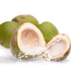 coconut endosperm