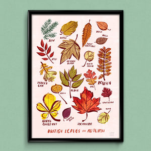British Leaves in Autumn A3 Print
