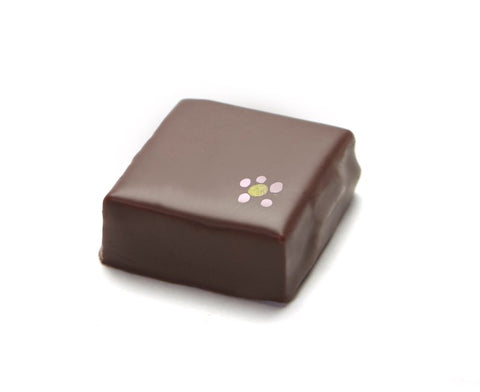 Hibiscus Flower Chocolate Confection - Silky cream infused with Hibiscus flowers and chaparral honey, in a dark chocolate.
