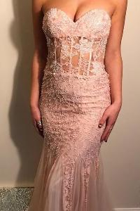 Sophisticated Pink Sweetheart Open-Back Appliqued Tulle Dress
