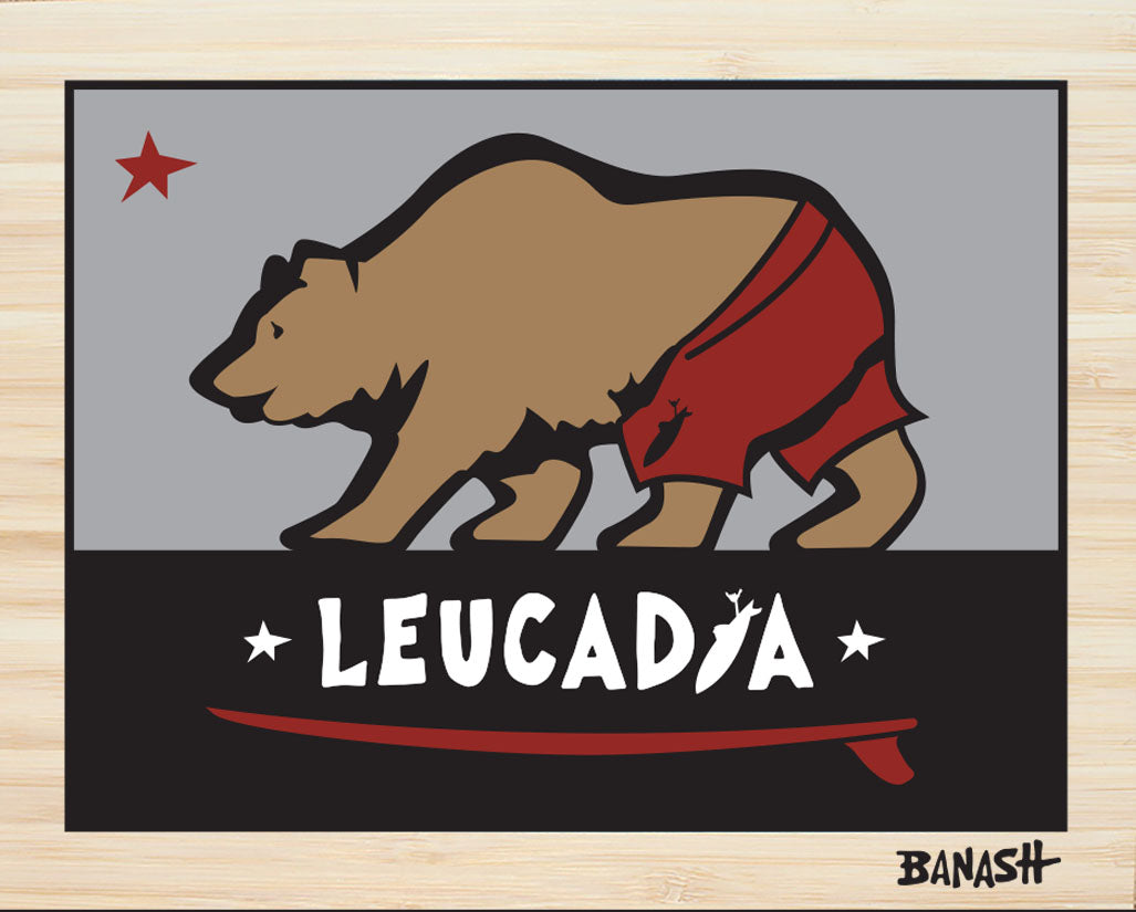 LEUCADIA ~ CATCH A BEAR ~ SURF TRUNKS ~ STONE GREMMY ~ BAMBOO