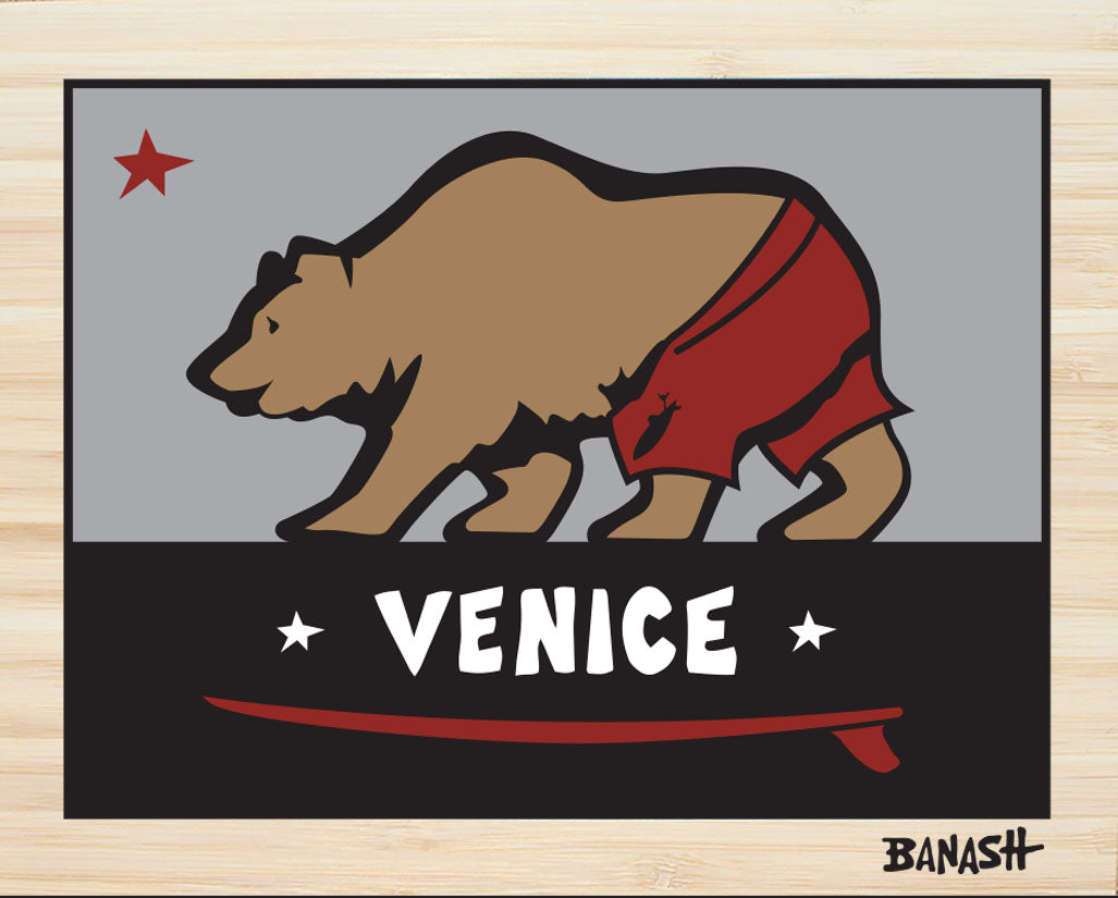 VENICE ~ CATCH A BEAR ~ SURF TRUNKS ~ STONE GREMMY ~ BAMBOO