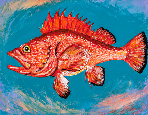 """Just a Rockfish"" Art Prints"