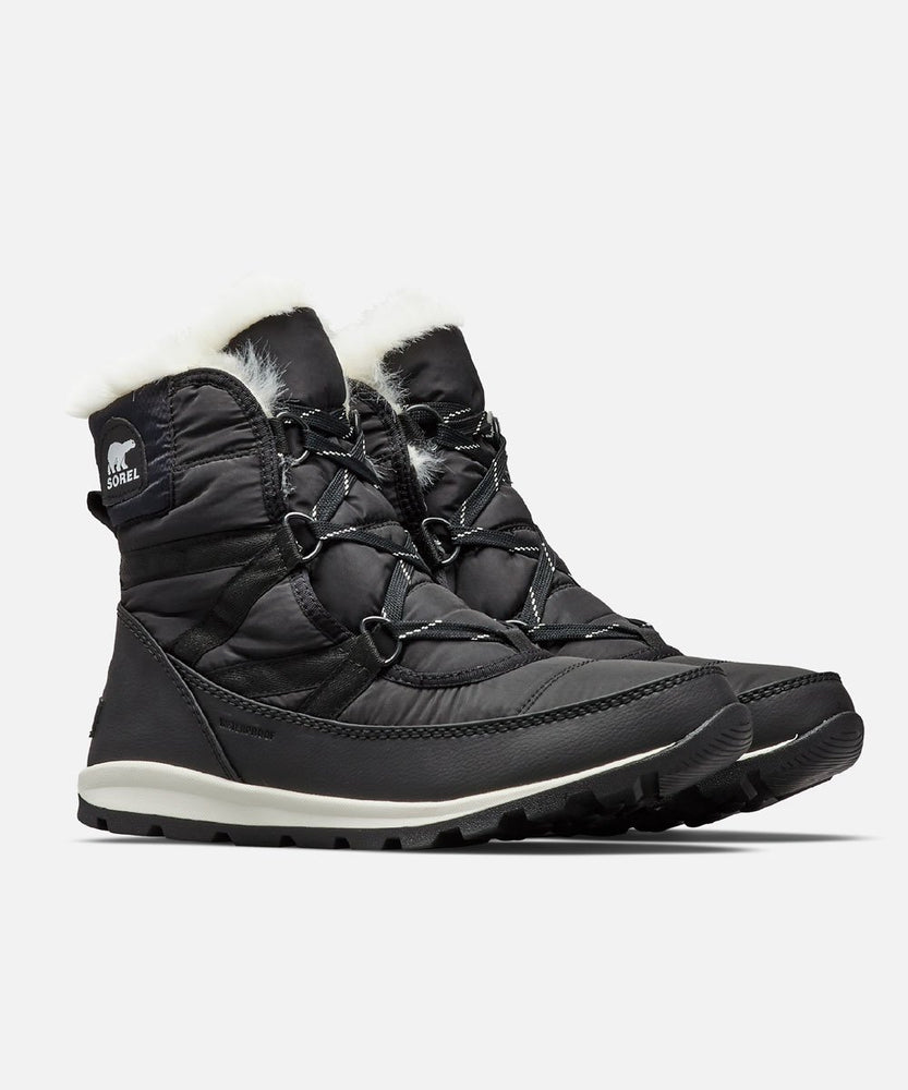 Sorel Women's Whitney Short Lace Winter Boots in Black at Dave's New York