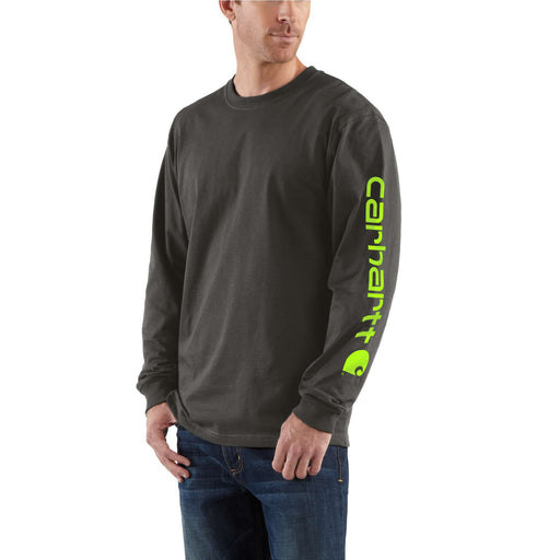 Carhartt Signature Sleeve Logo Long-Sleeve T-Shirt in Peat at Dave's New York