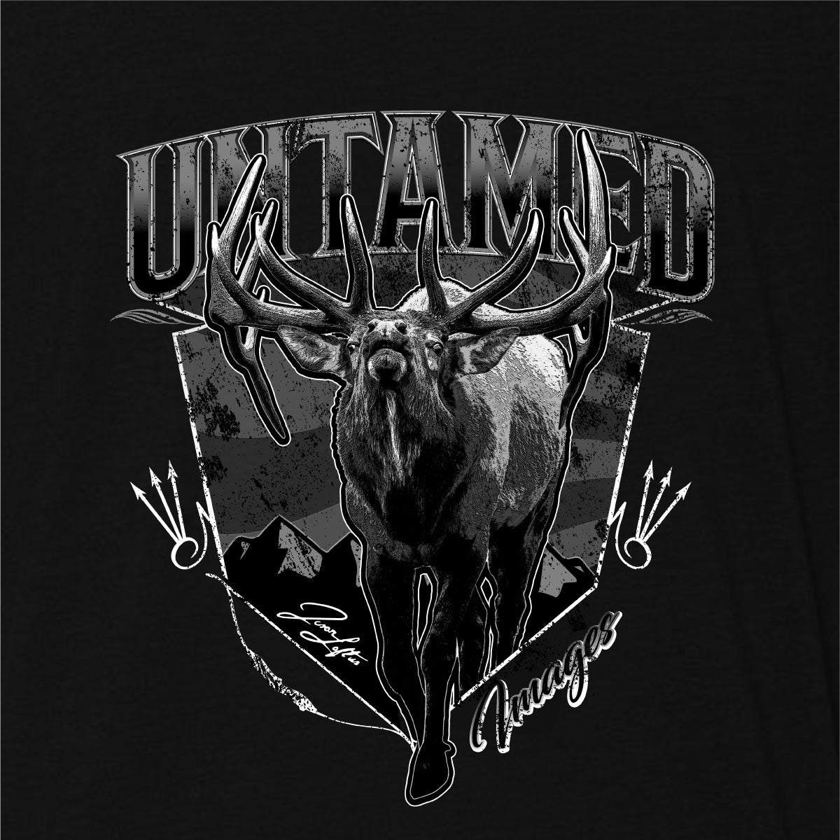 Untamed Images Bull (SALE)