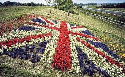 Brexit: Lots for gardeners to think about