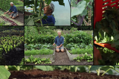 Our vlog pick - Charles Dowding, no dig gardening