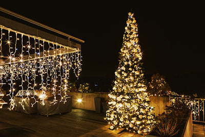 Technology in the garden - outdoor Christmas lights