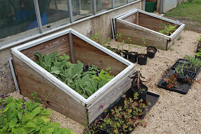 Technology in the garden - cold frame know-how