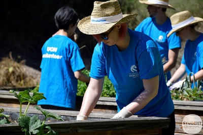 University gets students gardening