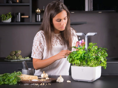 Technology in the garden - Veritable Indoor Garden