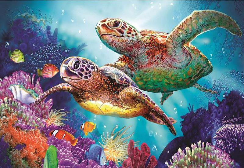 Turtle Diamond Painting Kit