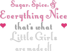 Load image into Gallery viewer, Sugar and Spice Little Girl