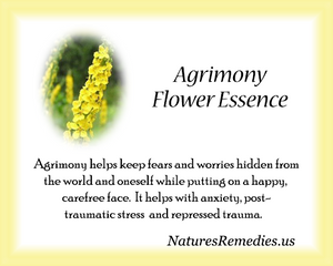 Agrimony Flower Essence - Nature's Remedies