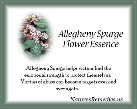 Allegheny Spurge Flower Essence - Nature's Remedies