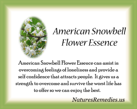 American Snowbell Flower Essence - Nature's Remedies