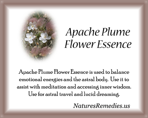 Apache Plume Flower Essence - Nature's Remedies