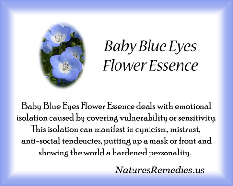 Baby Blue Eyes Flower Essence - Nature's Remedies