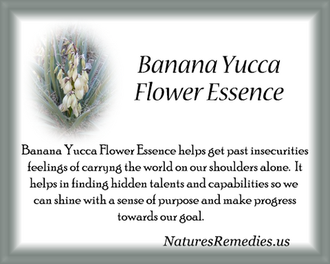 Banana Yucca Flower Essence - Nature's Remedies