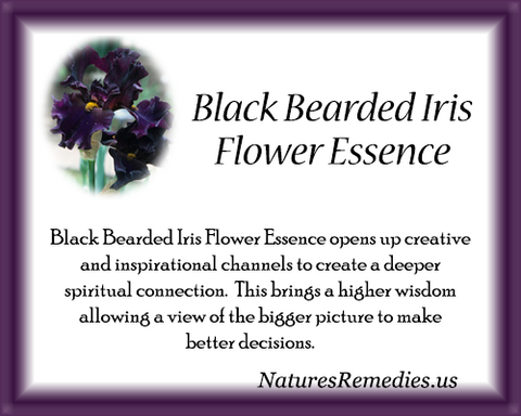 Black Bearded Iris Flower Essence - Nature's Remedies