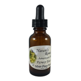 American Holly Flower Essence - Nature's Remedies