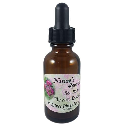 Bee Balm Flower Essence - Nature's Remedies