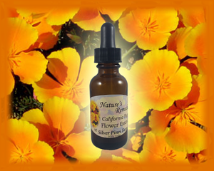 California Poppy Flower Essence - Nature's Remedies