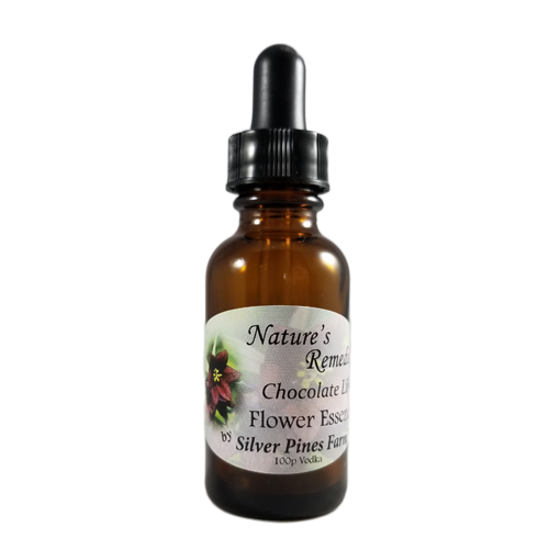 Chocolate Lily Flower Essence - Nature's Remedies